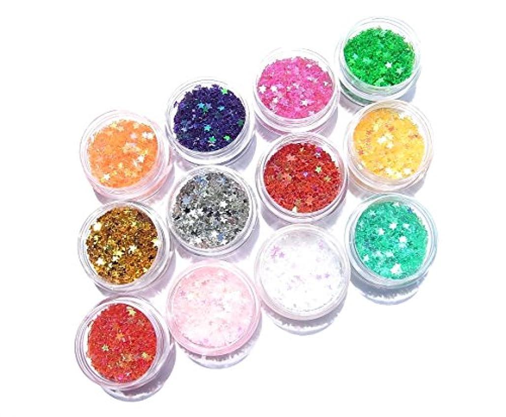 【jewel】厳選12色 2.5mm スター 星ホログラム 各色2g入り ジェル ネイル