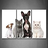 最初壁アート–かわいい犬と猫Sit inホワイト背景壁アート絵画プリントキャンバス動物の画像ホーム装飾ギフト 16x32inchx3Panel 8210382F