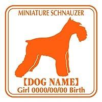 ワラ犬 ミニチュアシュナウザー (ミニシュナ) ステッカー Eパターン ガール フルーティオレンジ