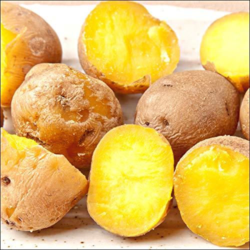 北海道産 越冬 じゃがいも 訳あり インカのめざめ 10kg 馬鈴薯 ジャガイモ