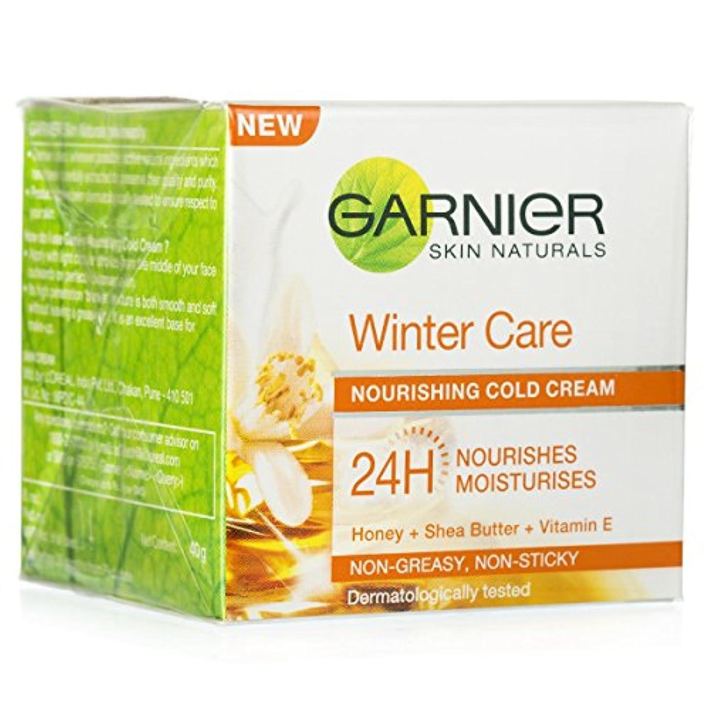 支出詳細な削減GARNIER SKIN NATURALS WINTER CARE NOURISHING COLD CREAM 40GM
