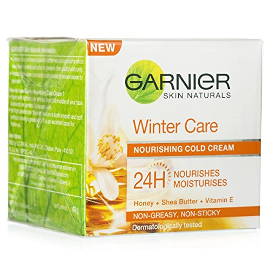 会話雇用者粘性のGARNIER SKIN NATURALS WINTER CARE NOURISHING COLD CREAM 40GM