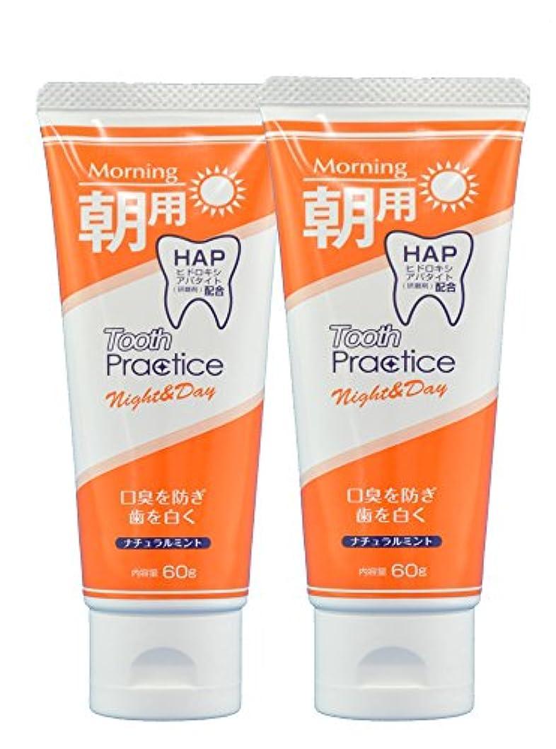 仕様政治家診療所トゥースプラクティス ナイト&デイ Tooth Practice Night&Day 2本セット 60g×2 (昼用)