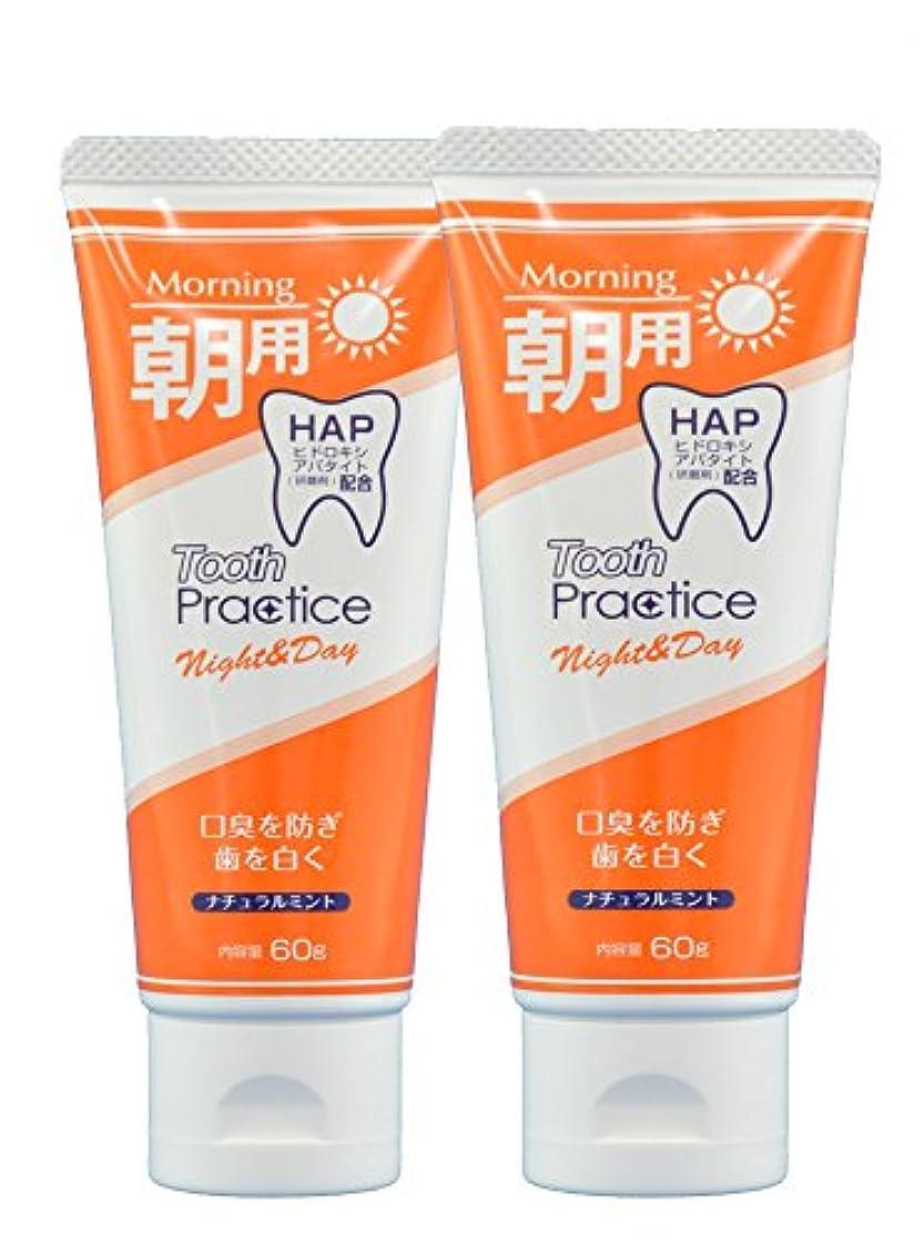著名な地味な適応するトゥースプラクティス ナイト&デイ Tooth Practice Night&Day 2本セット 60g×2 (昼用)