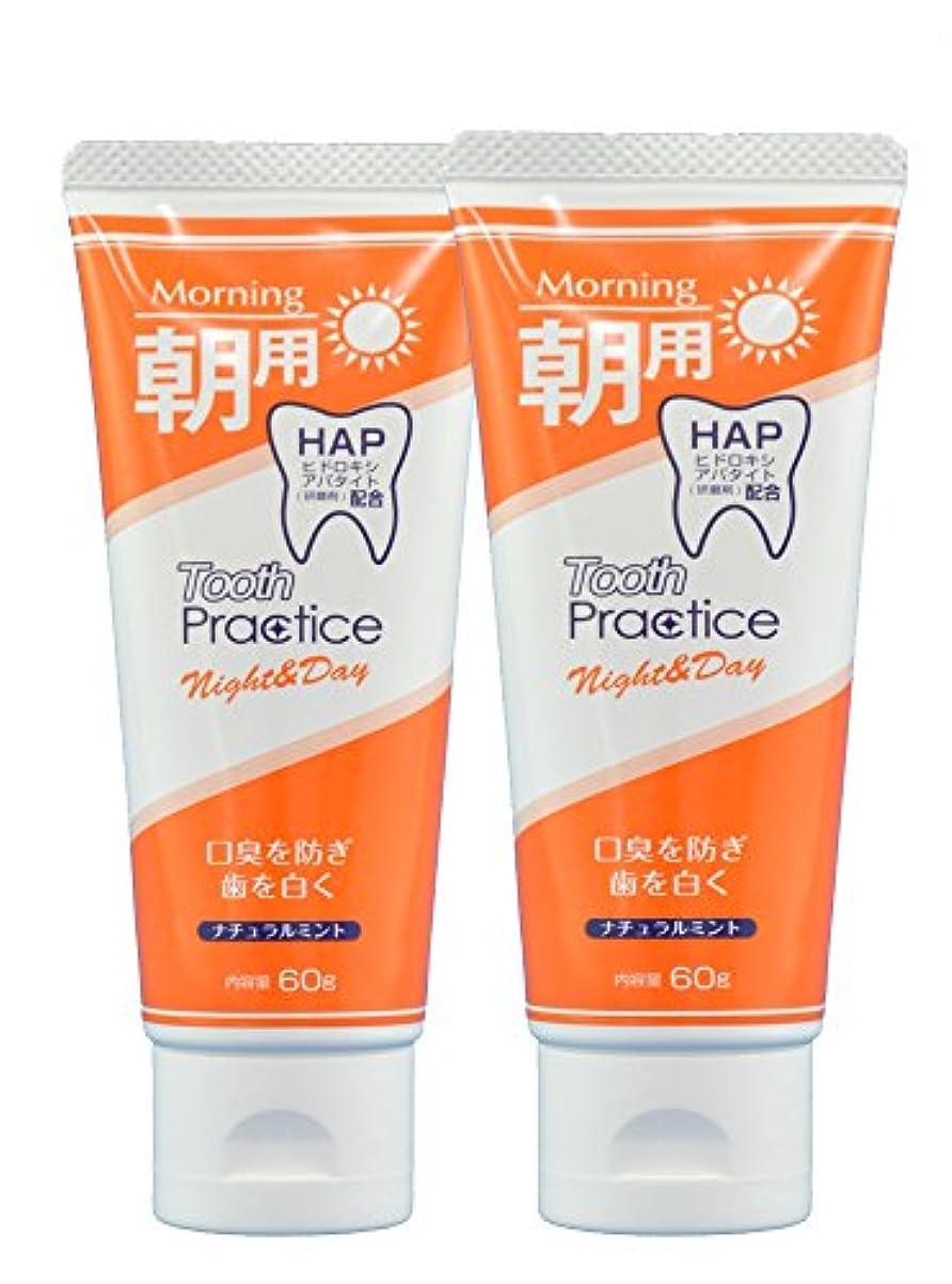 夫降雨おじいちゃんトゥースプラクティス ナイト&デイ Tooth Practice Night&Day 2本セット 60g×2 (昼用)