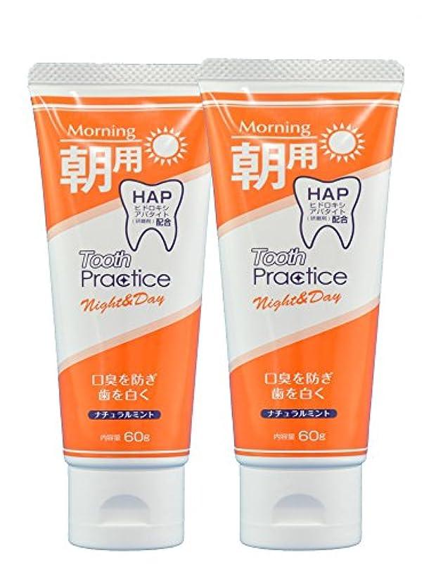 遊具中断プレートトゥースプラクティス ナイト&デイ Tooth Practice Night&Day 2本セット 60g×2 (昼用)