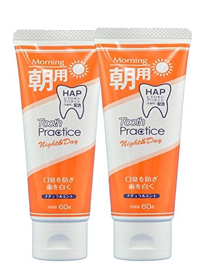 トゥースプラクティス ナイト&デイ Tooth Practice Night&Day 2本セット 60g×2 (昼用)
