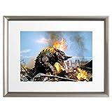 ウルトラ百景 ウルトラマン Best Scene 100 アートポスター (アートフレーム 付) 43×33cm 透明怪獣 ネロンガ 9310