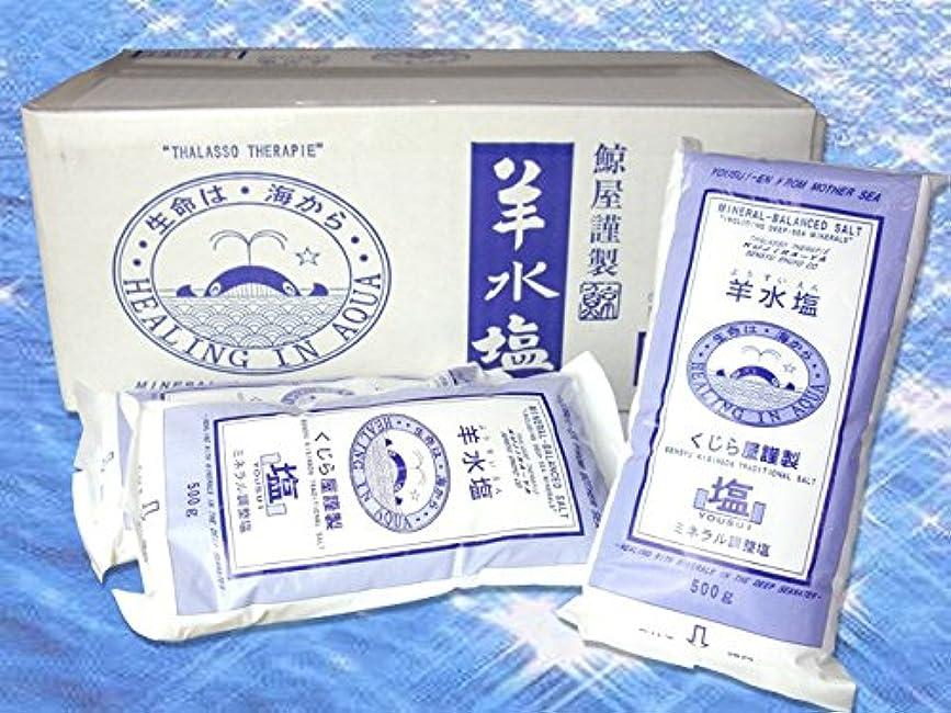 コントロール抗生物質積極的に美容 入浴剤 羊水塩 500g×20袋 ミネラルや海洋深層水イオン等を人体液と同様に配合 ミネラル調整塩