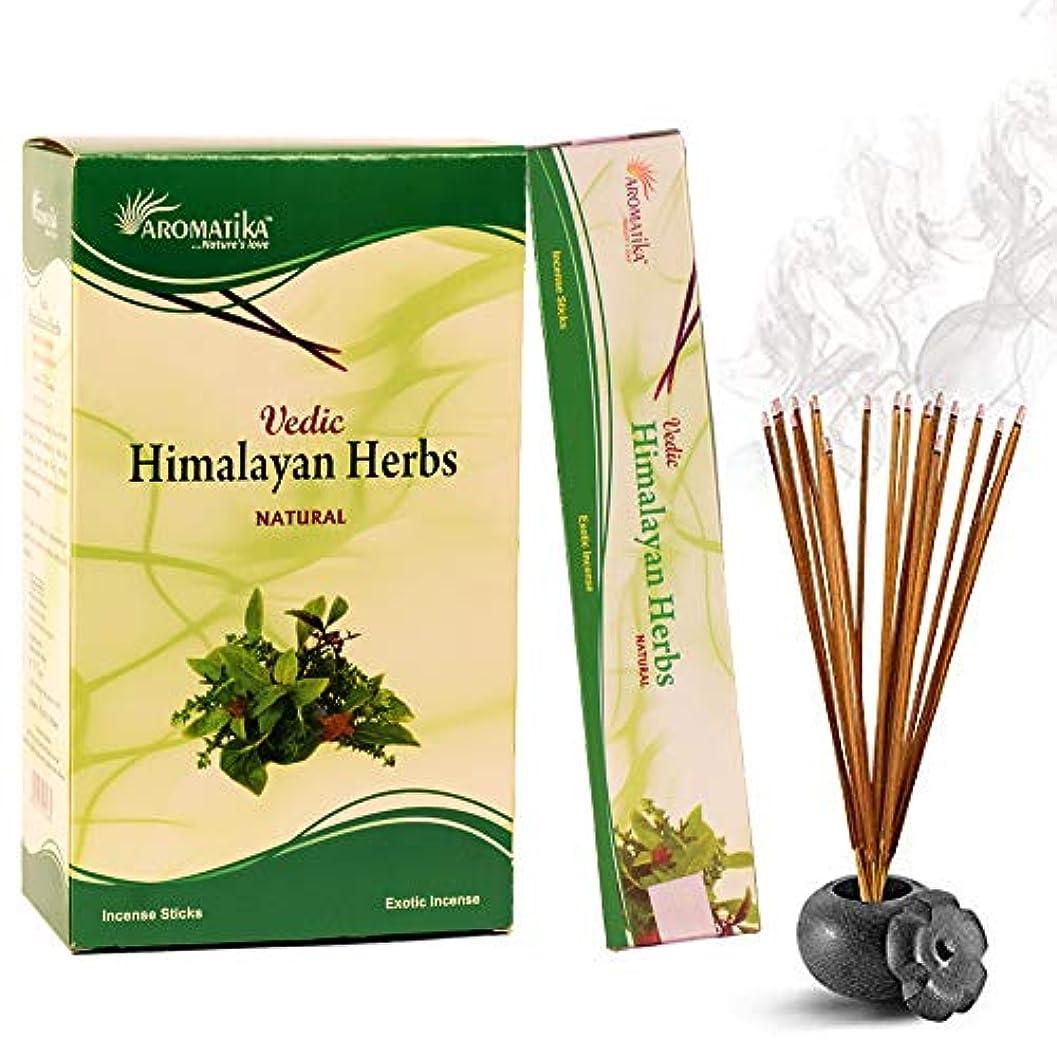上記の頭と肩出費話すaromatika Himalayan Herbs 15 gms Masala Incense Sticks Pack of 12