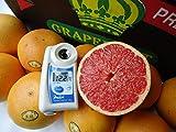 南国フルーツ ワンランク上のグレープフルーツ ゴールデンクラウン アメリカ・フロリダ産グレープフルーツ  ルビー 大 10玉