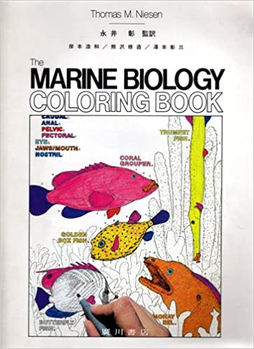 カラースケッチ海洋生物学 | Tho...