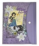 デルフィーノ B6手帳カバー ディズニー ジャスミン DZ-78027