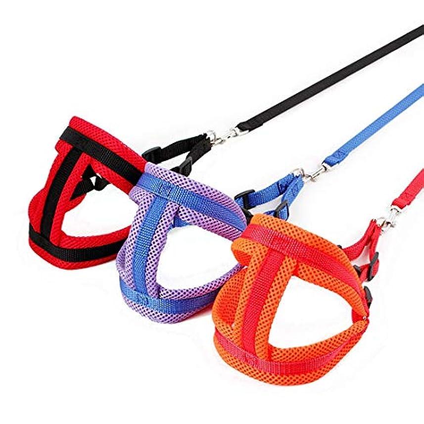 ヶ月目反対した玉ねぎKeriya Sende 首輪 犬 耐磨耗 犬用リード トレーニングリード 愛犬訓練用 犬用引きひも ロープ ハーネス (Color : オレンジ, サイズ : 2.5X120cm)