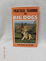 Practical Training for Big Dogs