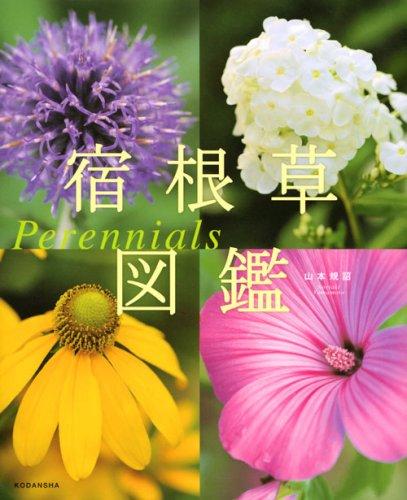 宿根草図鑑 Perennialsの詳細を見る