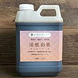 驚異の根張りを実現する液体肥料・発根剤 活根彩果(カッコンサイカ)【2kg】