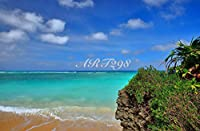 風景写真ポスター 波照間島ニシ浜60  自分好みの額に入れたりボードに貼って部屋飾りを楽しめます。最高級の素材にこだわりのプリント。 (A2 59.4×42.0cm)