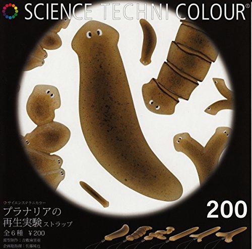 [해외]과학 선명 플라나리아의 재생 실험 스트랩 총 6 종 세트/Science Technicolor Plantaria `s regeneration experiment straps all 6 types