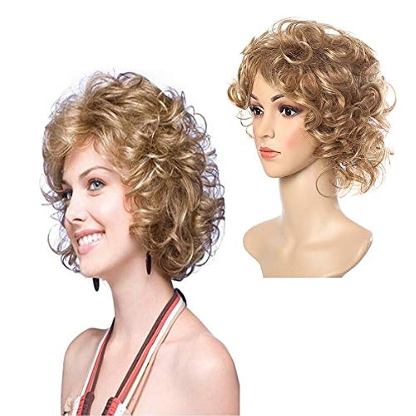 企業ユダヤ人引退したYOUQIU ショートわずかウェービーヘアウィッグ耐熱無料キャップかつらを持つ女性女性ウィッグのために耐性 (色 : Blonde)