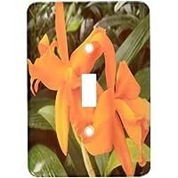 3drose LSP _ 22529_ 1Cattleya OrchidオレンジOrchids Single切り替えスイッチ