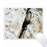 ビーチに横たわっている古いdriftwoodを閉じます。 PC Mouse Pad パソコン マウスパッド