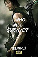 The Walking Dead - Terminus Daryl Poster 24 x 36in