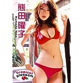 熊田曜子 Tropical Blossom [DVD]