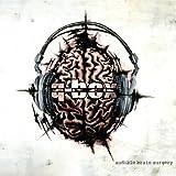 Audible Brain Surgery