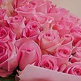 翔んで埼玉上映記念 ピンク バラの花束 翌日発送できます!生花 バラ 30本 ピンク バラ プレゼント ギフトにはちょうど良いボリューム amazon特別価格です 現在店頭では¥7,500で販売しております。