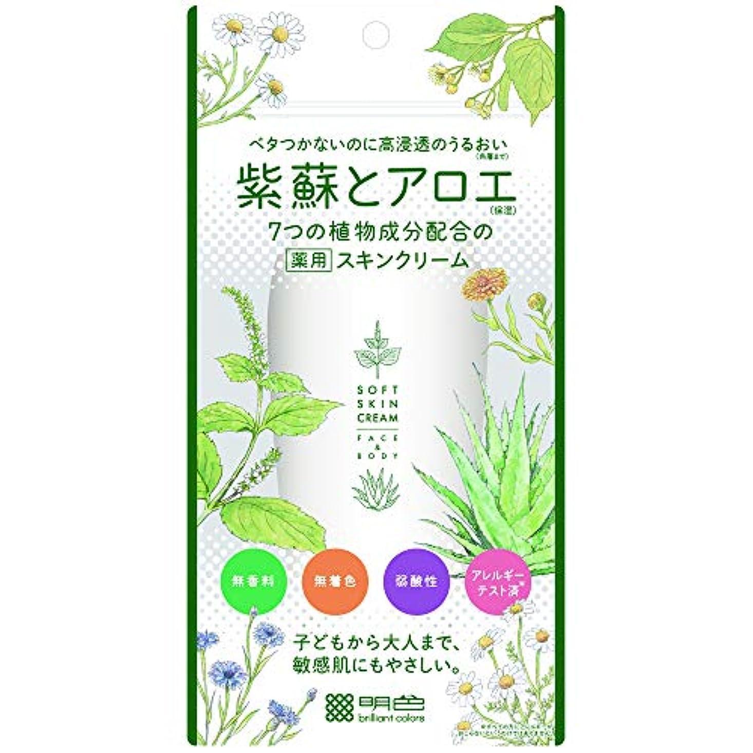 やけど知り合い松の木明色化粧品 紫蘇とアロエ 薬用スキンクリーム 190g