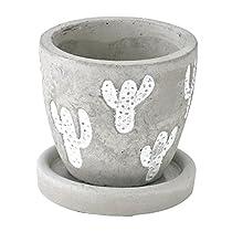 SPICE OF LIFE 植木鉢 レリーフプランター サボテン グレー Sサイズ 直径8×8cm セメント 底穴あり 皿付き CCGH1861