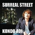 SURREAL STREET(在庫あり。)