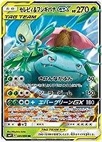 ポケモン カード セレブ&フシギヌザウエルGXRRタグチーム SM9 Holo 001/095 日本