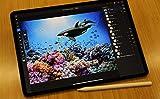 iPad超活用術2020