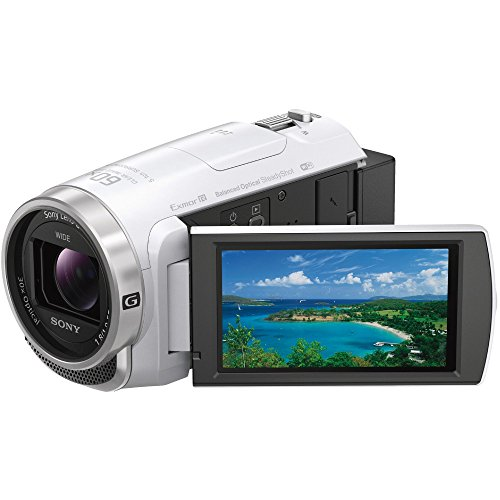 ソニー SONY ビデオカメラ Handycam HDR-C...