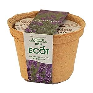 エコットS ラベンダーの関連商品5