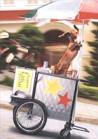 Runaway Hot Dog Cart Funny Congratulations Card by Avanti Press Avanti Press