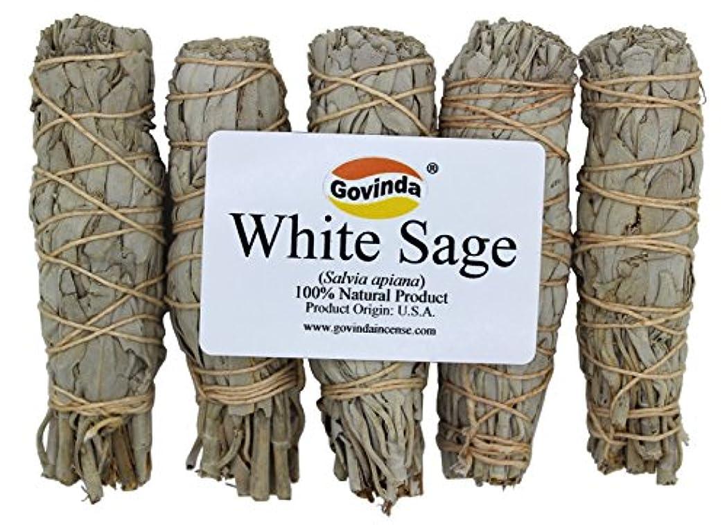 ブランド名フライカイト野なGovinda – Pack of 5 MiniホワイトセージSmudge Stick、4インチLong