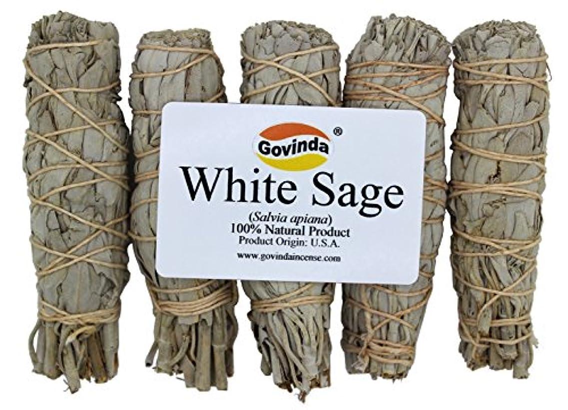 商業の冷える力Govinda – Pack of 5 MiniホワイトセージSmudge Stick、4インチLong