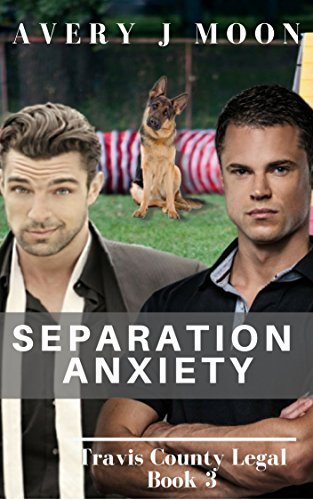 Separation Anxiety (Travis County Legal Book 3) (English Edition)