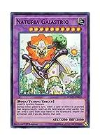 遊戯王 英語版 WSUP-EN033 Naturia Gaiastrio ナチュル・ガイアストライオ (スーパーレア) 1st Edition