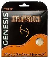 Genesis ジェネシス Xplosion エックスプロージョン17 (1.25mm) テニスストリング [並行輸入品]
