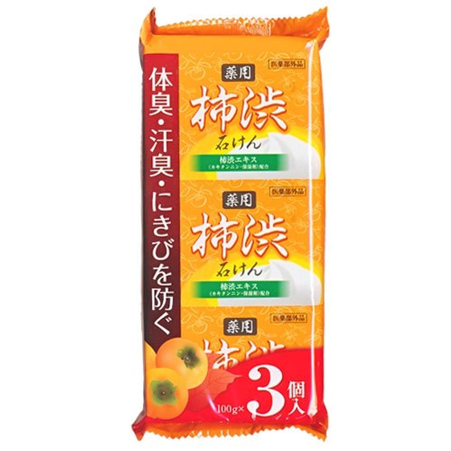 繊細個人的な群がる柿渋石鹸 100g×3個入 柿渋エキス カキタンニン?保湿剤配合