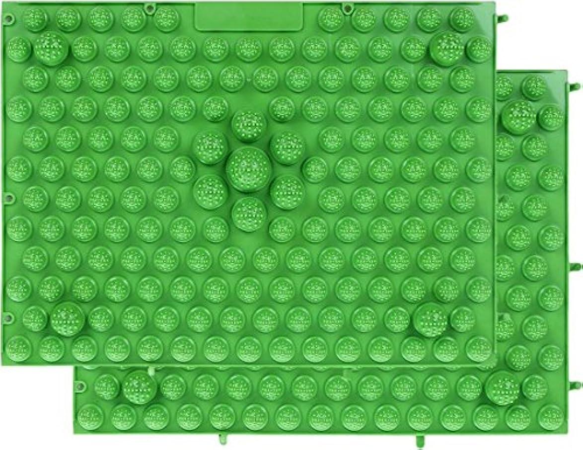 栄養ペイン砂CACIQEUマッサージ屋さんの健康マット ドラゴンマット 足つぼ健康マット 足踏みマッサージ 2枚セット (グリーン)