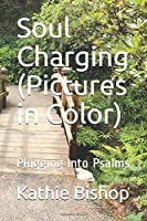 Soul Charging (Pictures in Color): Plugging Into Psalms