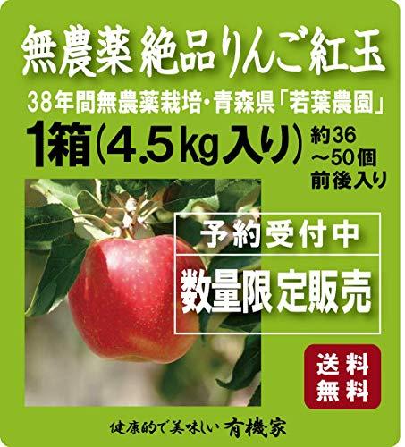 無農薬りんご「紅玉」4.5Kg~5kg★...