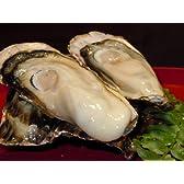 北海道産/サロマ湖 1年もの 殻付き生【牡蠣】8キロ/訳あり