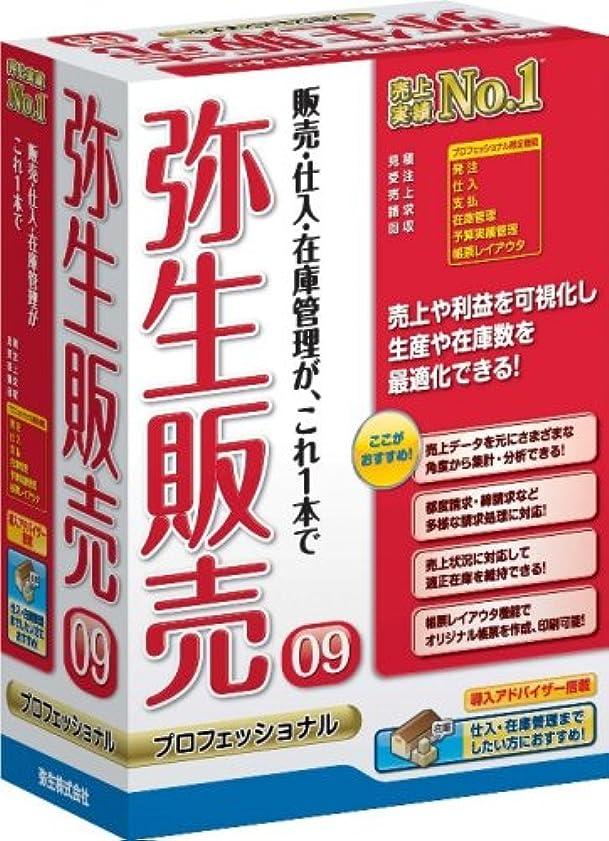 皮肉なビーズ会計【旧商品】弥生販売 09 プロフェッショナル