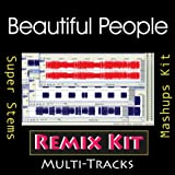 Beautiful People (128 BPM Bass Synths Only Tribute To Chris Brown feat Benny Benassi)